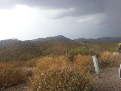 Scottsdale Residential Lots & Land For Sale: 8828 E Red Lawrence Drive
