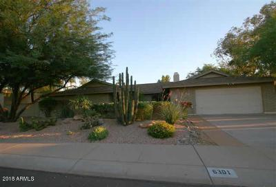 Scottsdale Single Family Home For Sale: 6301 E Sandra Terrace