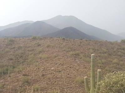 Scottsdale Residential Lots & Land For Sale: 8848/8828 E Red Lawrence Drive