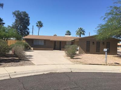 Phoenix Single Family Home For Sale: 9630 N 34th Place