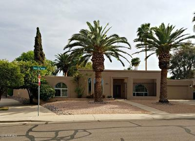 Scottsdale Single Family Home For Sale: 8573 E Via De Viva