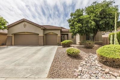 Phoenix Single Family Home For Sale: 41116 N Lytham Way