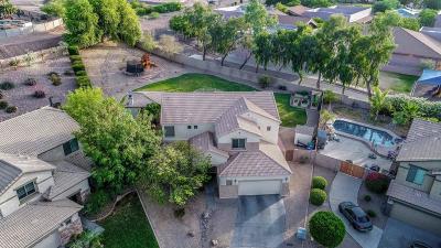 Mesa AZ Single Family Home For Sale: $460,000