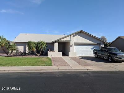 Mesa Single Family Home For Sale: 861 E Hackamore Street