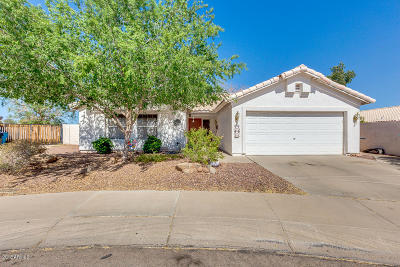 Phoenix Single Family Home For Sale: 20017 N 2nd Drive