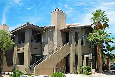 Scottsdale AZ Condo/Townhouse For Sale: $250,000