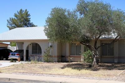 Mesa Single Family Home For Sale: 2052 E Jerome Avenue