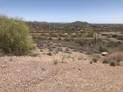 Gold Canyon Residential Lots & Land For Sale: 9357 E Skyline Trail