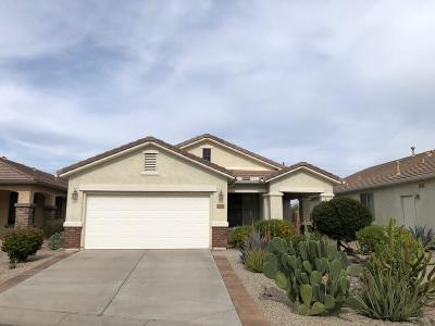 San Tan Valley Single Family Home For Sale: 31755 N Poncho Lane N