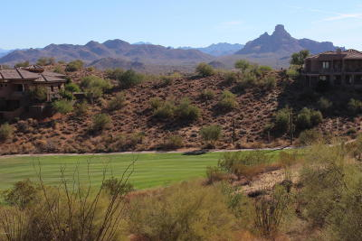 Fountain Hills Residential Lots & Land For Sale: 9823 N Four Peaks Way