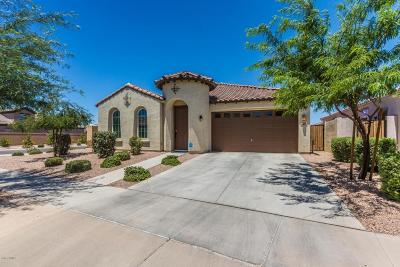Queen Creek Single Family Home For Sale: 22210 E Creekside Drive