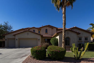 Chandler Single Family Home For Sale: 672 W Wildhorse Drive