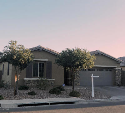 Goodyear Single Family Home For Sale: 14309 W Desert Flower Drive