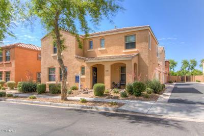 Gilbert Single Family Home For Sale: 2852 E Megan Street