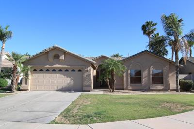 Chandler Single Family Home For Sale: 1333 W San Carlos Place