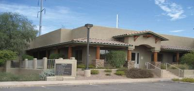 Scottsdale Commercial For Sale: 10575 N 114th Street
