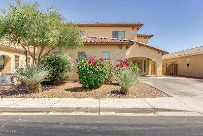 Maricopa Single Family Home For Sale: 45322 W Zion Road