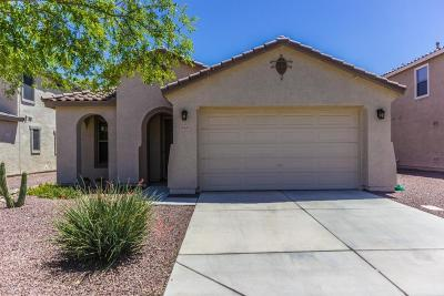 Surprise Single Family Home For Sale: 16423 W Prickly Pear Trail