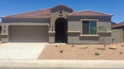 Avondale, Buckeye, Goodyear, Litchfield Park Single Family Home For Sale: 23770 W Cocopah Street