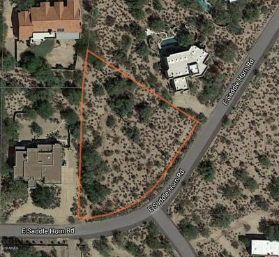 Scottsdale Residential Lots & Land For Sale: 8110 E Saddle Horn Road