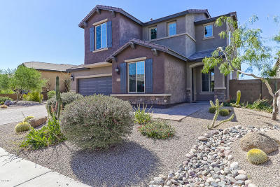 Cave Creek Single Family Home For Sale: 5633 E Lonesome Trail
