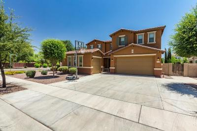 Gilbert Single Family Home For Sale: 3585 E Gary Way