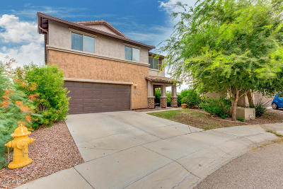 Florence Single Family Home For Sale: 7872 W Desert Blossom Way