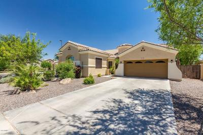 Chandler Single Family Home For Sale: 4391 E Nolan Place