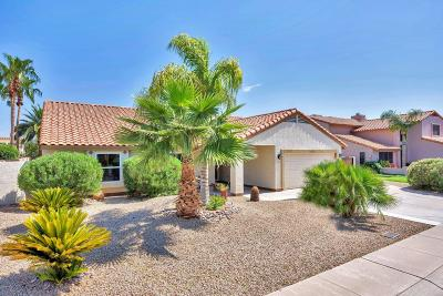 Scottsdale Single Family Home For Sale: 5437 E Grandview Road