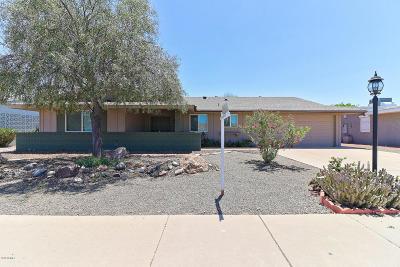 Sun City AZ Single Family Home For Sale: $225,000