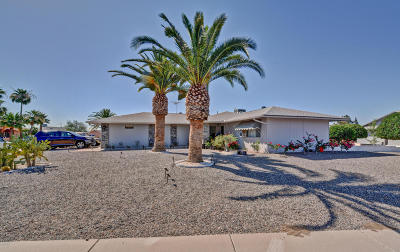 Sun City West Single Family Home For Sale: 17430 N 124th Avenue