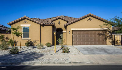 Goodyear Single Family Home For Sale: 757 N 156th Lane