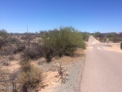 Scottsdale Residential Lots & Land For Sale: 143xx E Desert Vista Trail
