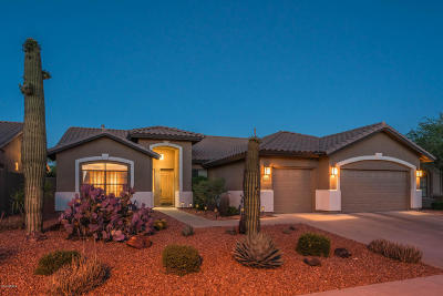 Cave Creek Single Family Home For Sale: 26803 N 45th Place #LOOK!!