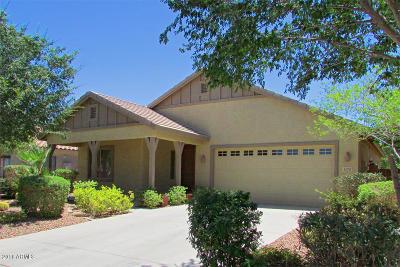 Maricopa Single Family Home For Sale: 42289 W Posada Drive