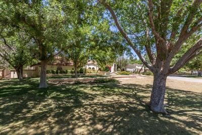 Tempe Single Family Home For Sale: 2120 E Ranch Road