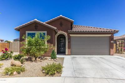 Goodyear Single Family Home For Sale: 2407 S 172nd Avenue