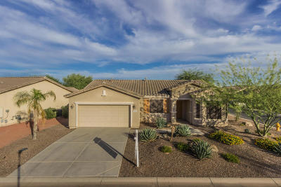 Maricopa Single Family Home For Sale: 20499 N Big Dipper Drive