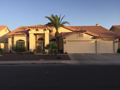 Avondale Single Family Home For Sale: 10933 W Citrus Grove Way