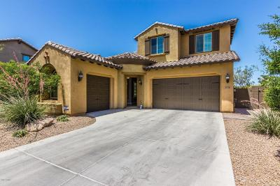 Phoenix Single Family Home For Sale: 3726 E Cat Balue Drive