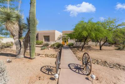 Cave Creek Single Family Home For Sale: 5921 E Rancho Del Oro Court