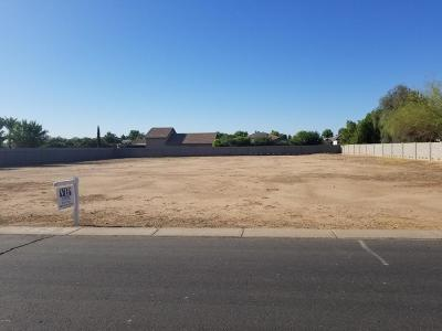 Gilbert Residential Lots & Land For Sale: 2654 E Country Shadows Court