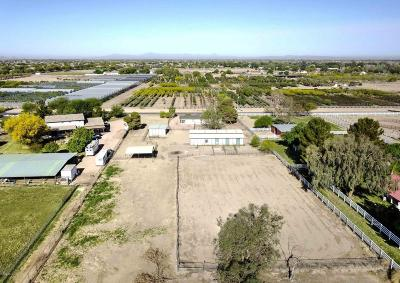 Gilbert Residential Lots & Land For Sale: 23317 S 180th Street