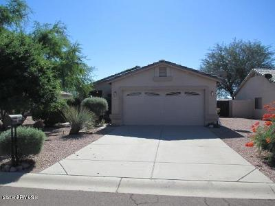 Sunrise At Gold Canyon Ranch Rental For Rent: 6939 S Russet Sky Way