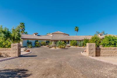 Scottsdale Single Family Home For Sale: 12340 E Mountain View Road