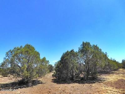 Ash Fork AZ Residential Lots & Land For Sale: $12,999