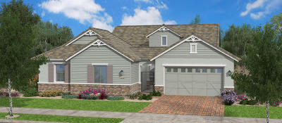 Gilbert Single Family Home For Sale: 4520 E Skousen Street E