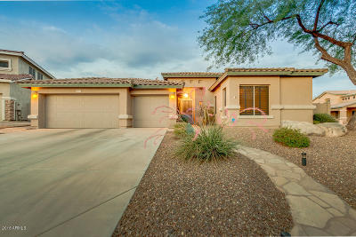 Cave Creek Single Family Home For Sale: 26617 N 44th Street
