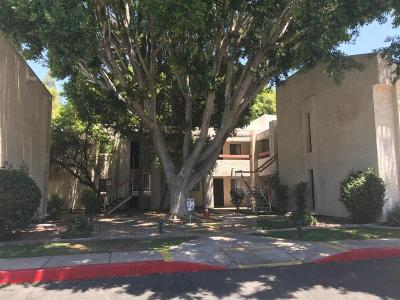 Phoenix  Apartment UCB (Under Contract-Backups): 3119 W Cochise Drive #152