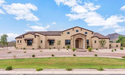 Chandler, Fountain Hills, Gilbert, Mesa, Paradise Valley, Queen Creek, Scottsdale, Gold Canyon, San Tan Valley Single Family Home For Sale: 21927 E Stacey Road